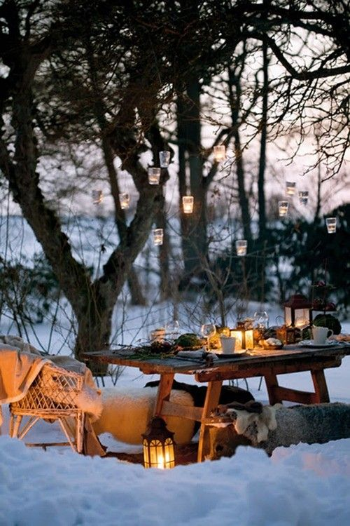 Dinner in the snow?  I am definately doing this in my backyard this season!    Who wants an invite??????