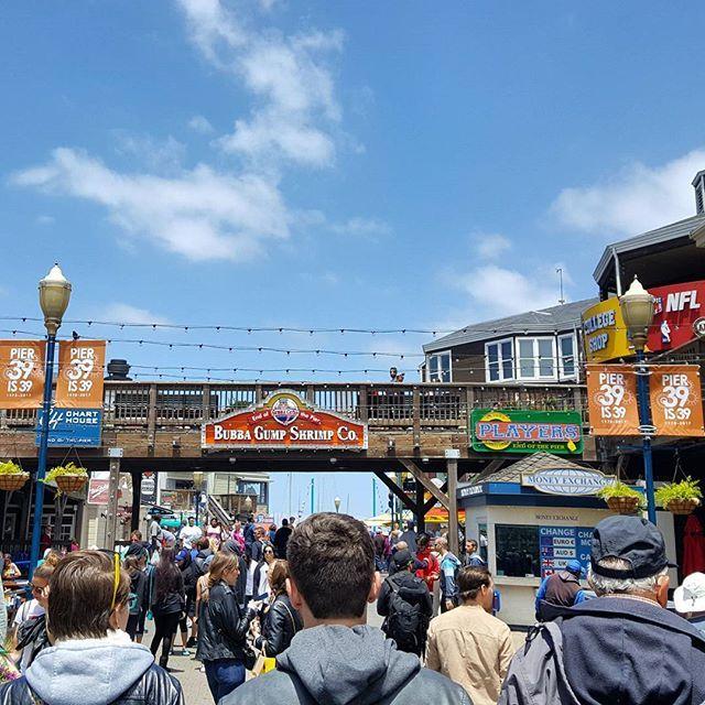 """""""📌Píer 39, San Francisco. Um dos passeios mais legais para se fazer na cidade. Um pier cheio de lojinhas, restaurantes legais e muita gente passeando. De lá a gente tem uma vista privilegiada para a Alcatraz e para toda a baía.  ________________________________________________ #califa #california #sanfran  #sanfrancisco #pier39 #vistcalifornia #greatview #landscape #traveltips #dicasdeviagem # #blogdeviagem #travelblog #rbbv #idasevindasblog #idasevindasdacarol #nature #wanderlust…"""