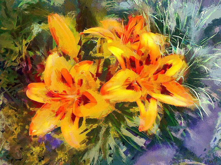 https://flic.kr/p/ZQPtgB   Flowers   The flowers in the garden of my friend. Photos were taken of her.