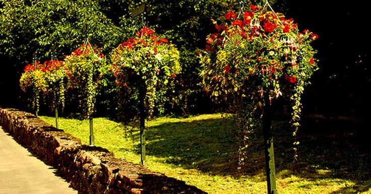 Qual é a quantidade de pedras a ser usada na decoração de um jardim?. Você já sonhou em adicionar uma elegante parede de pedra, uma pedra de pátio ou um caminho de cascalho na sua casa? Complemente seu próximo projeto de decoração de jardim com pedras da paisagem. Adicionar profundidade e textura no seu quintal é mais fácil do que você pensa.
