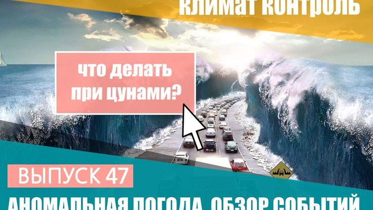 Аномальная погода. 21-27 января 2017. Что делать при цунами? Климат Конт...