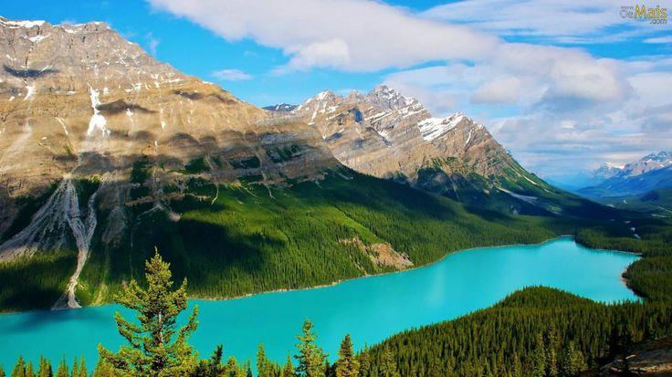 O Lago Peyto é um lago glacial localizado no Parque Nacional de Banff , um dos parques nacionais da Montanhas Rochosas do Canadá