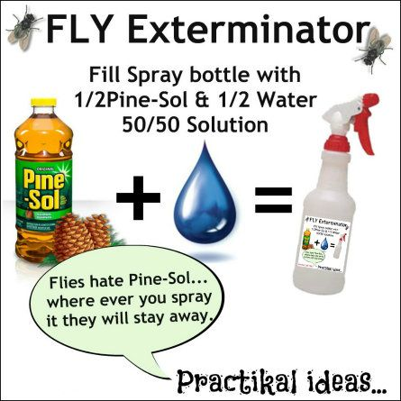 Keep the flies away easily with this combination half a spray bottle of Pine-Sol and the other half with water. Intended for Outdoor use. ~Practikal ideas...