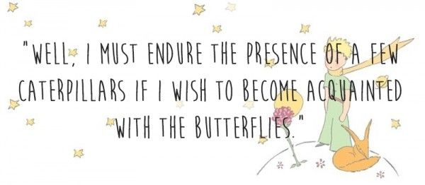 8 Antoine De Saint Exupery Quotes From The Little Prince: Best 25+ Little Prince Quotes Ideas On Pinterest