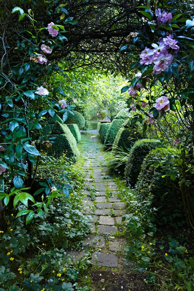450 best enchanted pathways images on Pinterest | Stairways, Forests ...