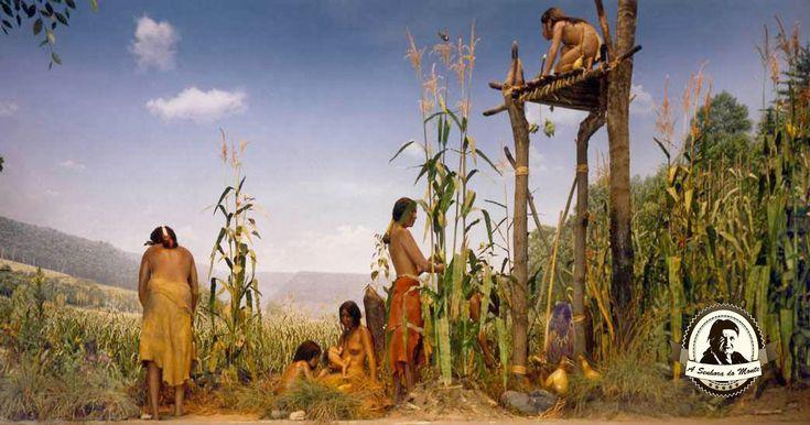 O termo;três irmãs refere-se à plantação de milho, feijão, e abóbora intercalados no mesmo local.