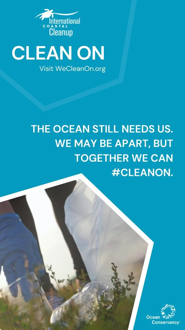 deans natural food market ocean