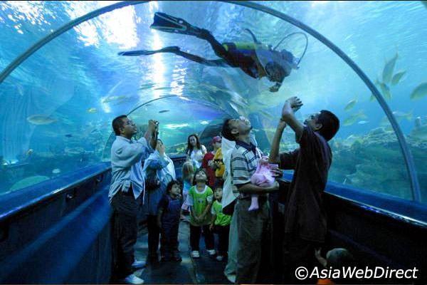 aquaria Kuala Lumpur - Sök på Google