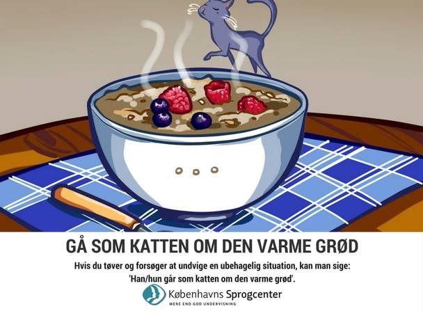 Gå som katten om den varme grød ordsprog Københavns Sprogcenter