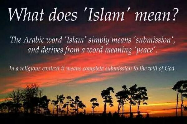 islam total submission to allah 2016-06-22 understanding islam xii: islam is submission islam is a chain of submission from the top down it is allah,  total readers.