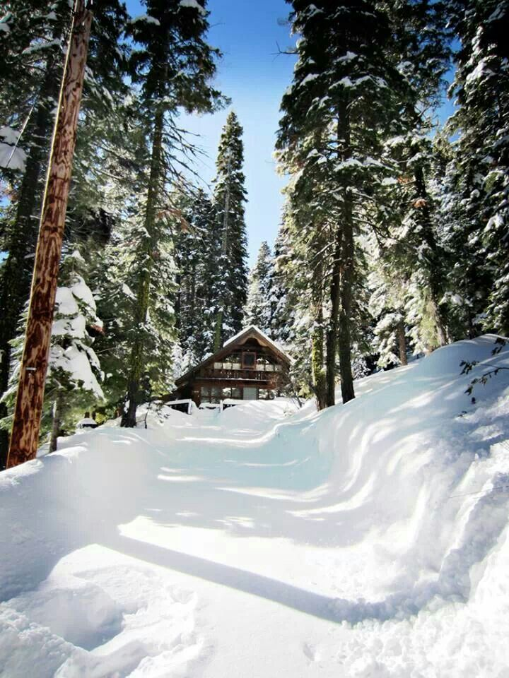 Lake Tahoe Winter Wallpaper Desktop Background: 79 Best A Picture's Worth A Thousand Words Images On