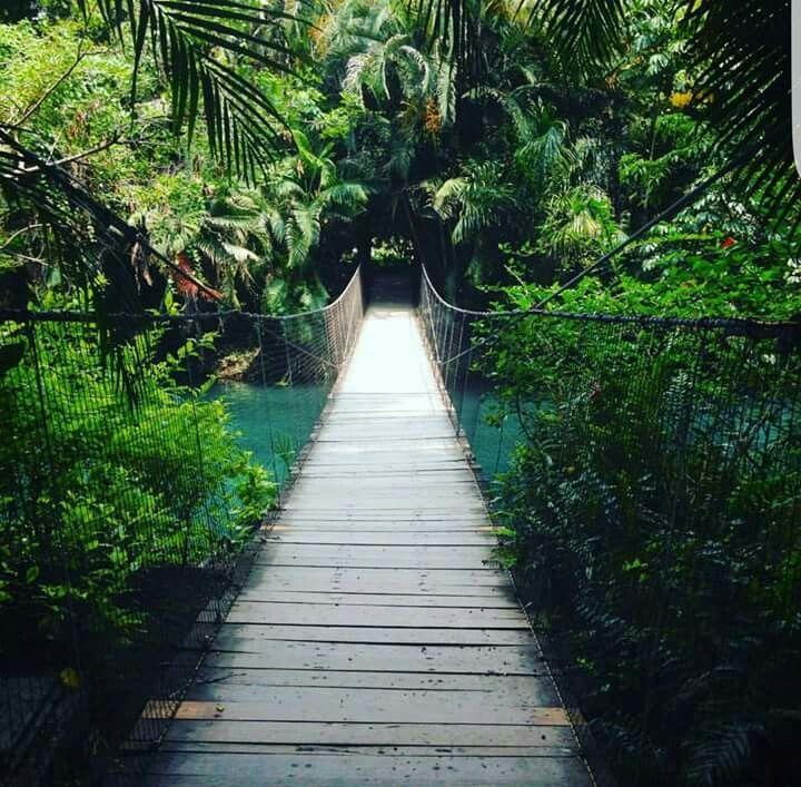 Parque Acuático Natural las Estacas.. Morelos.