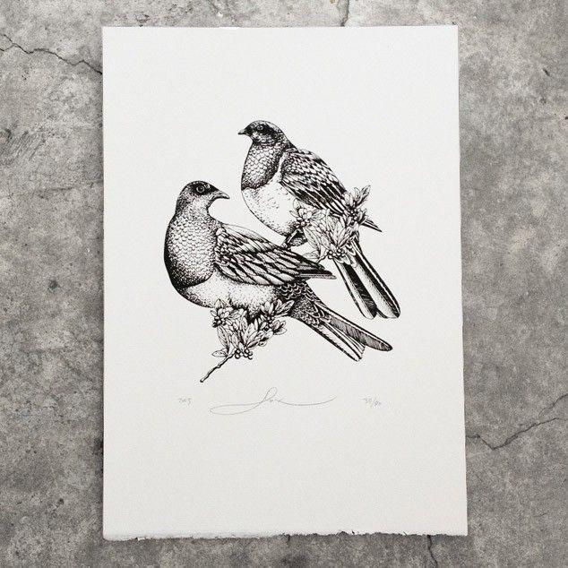 pigeons2.jpg (634×634)