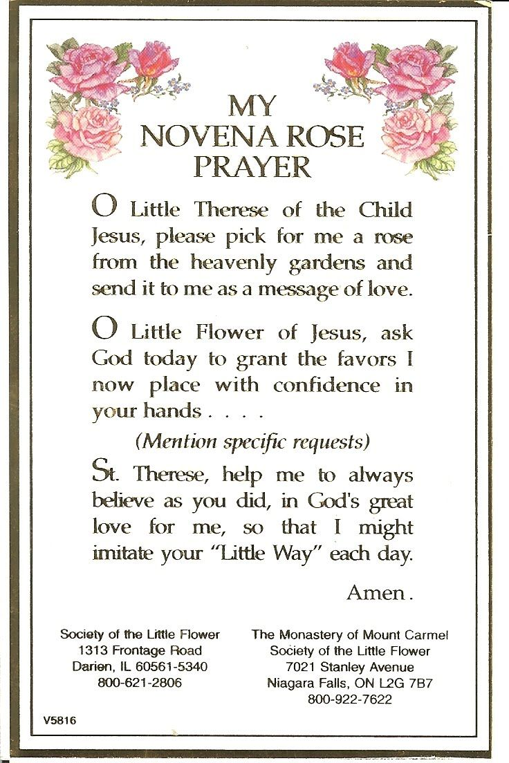 Novena to St Therese for a Rose