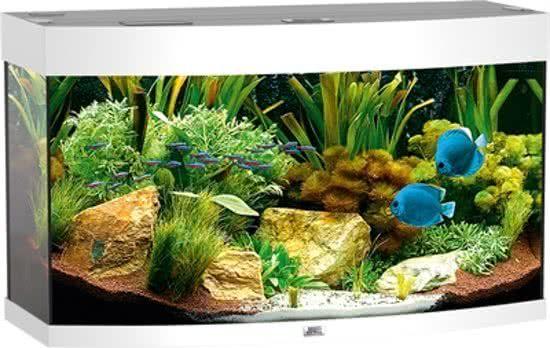 Juwel Vision - Aquarium - 180 liter - Wit