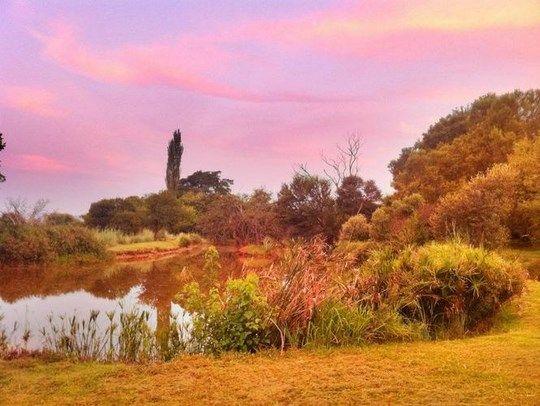 Picnic spots - Budmarsh Lodge, Magaliesburg, Gauteng, South Africa