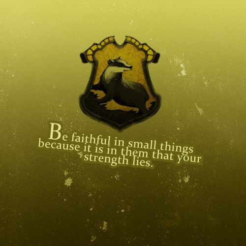 Harry potter 30 day challenge- day 9- favorite Hogwarts house- hufflepuff