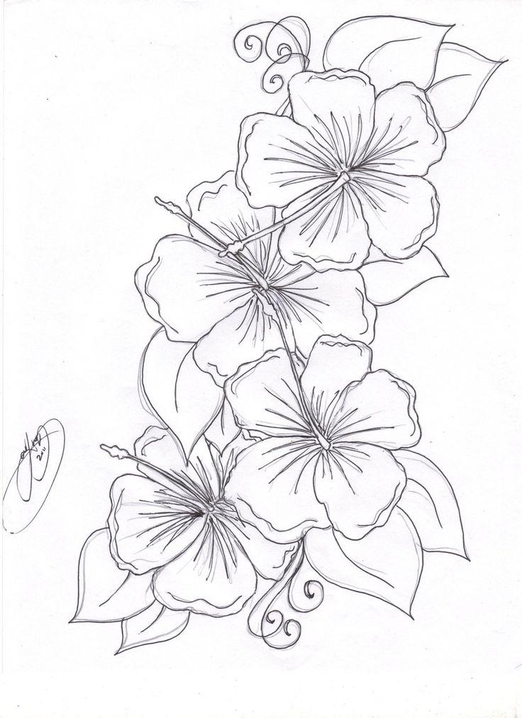 Mais de 1000 ideias sobre tatuajes flores hawaianas no for Hibiscus flower coloring page