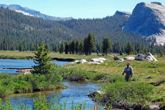 28 best yosemite images on pinterest national parks for Fly fishing yosemite