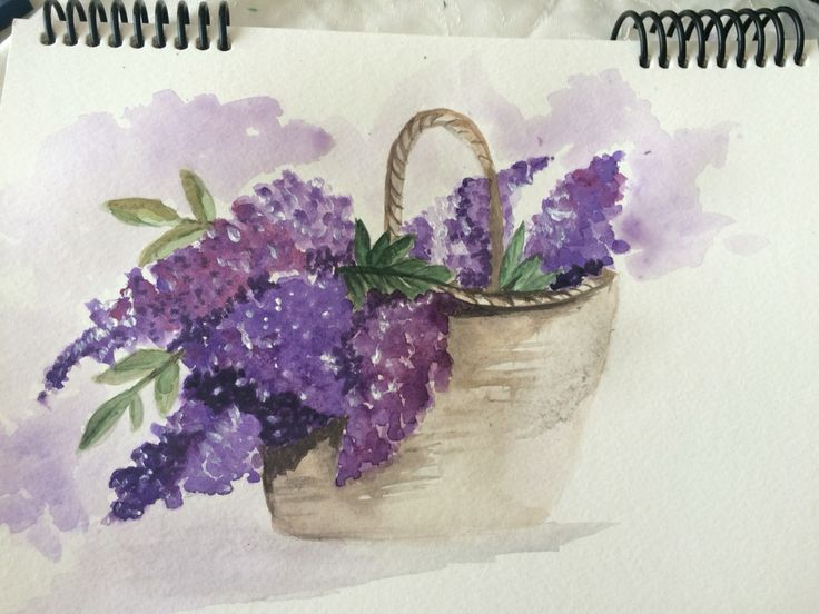 watercolour painting lilacs