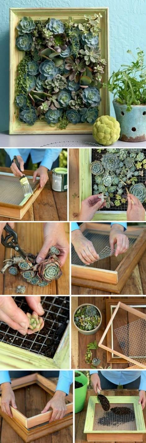 Netter kleiner vertikaler Garten   – Projects to Try