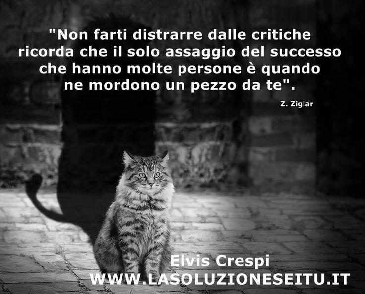 Non farti distrarre dalle critiche...