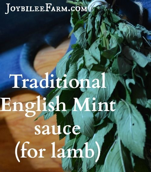 Traditional English mint sauce for lamb isn't sweet like mint jelly.  It is a savoury sauce used to brighten the heavy taste of lamb and to aid in digesting it.  It's as traditional to serve this mint sauce with lamb as it is to serve horseradish and yorkshire pudding with roast beef.  Traditional mint sauce …