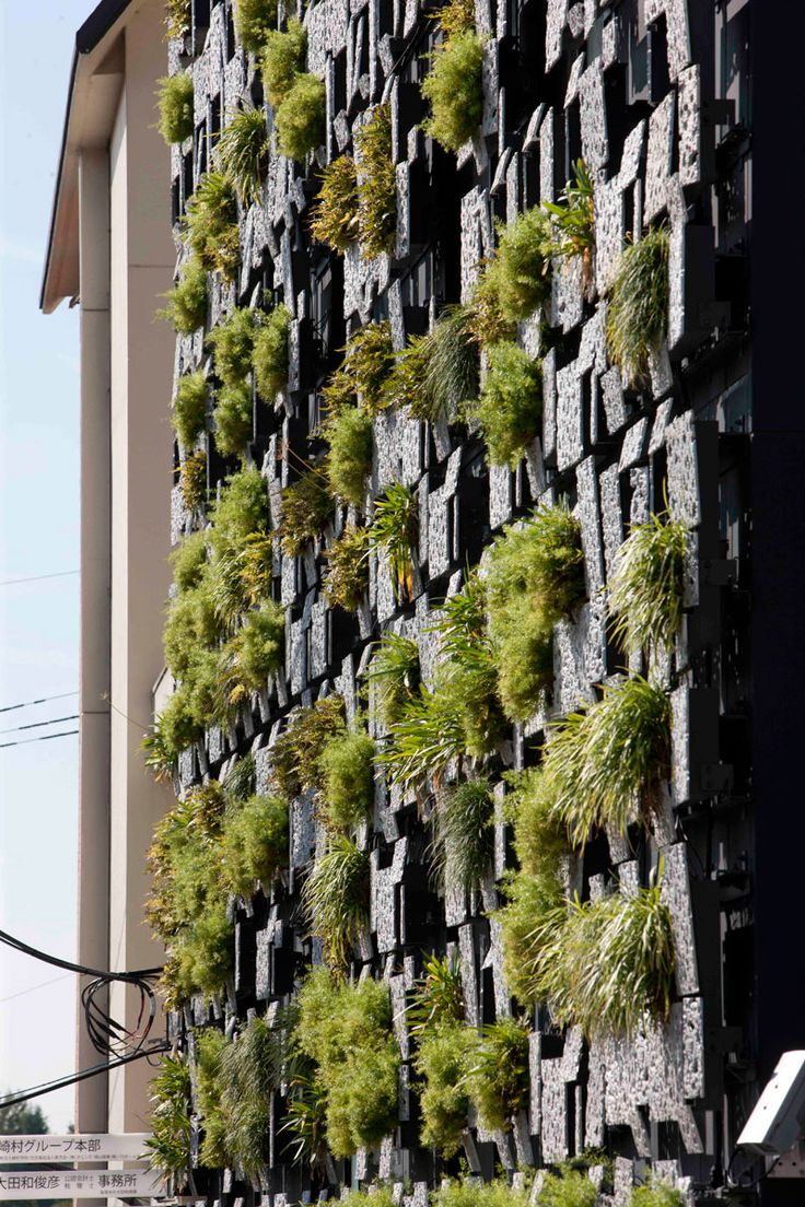 127 best Green Walls Vertical Gardens images on Pinterest