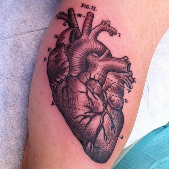 17 Ink-credible Science-Inspired Tattoos: We heart this anatomical diagram by LA Ink's Kim Saigh, who completed this piece coincidentally on Valentine's Day.  Source: Instagram user kimsaigh
