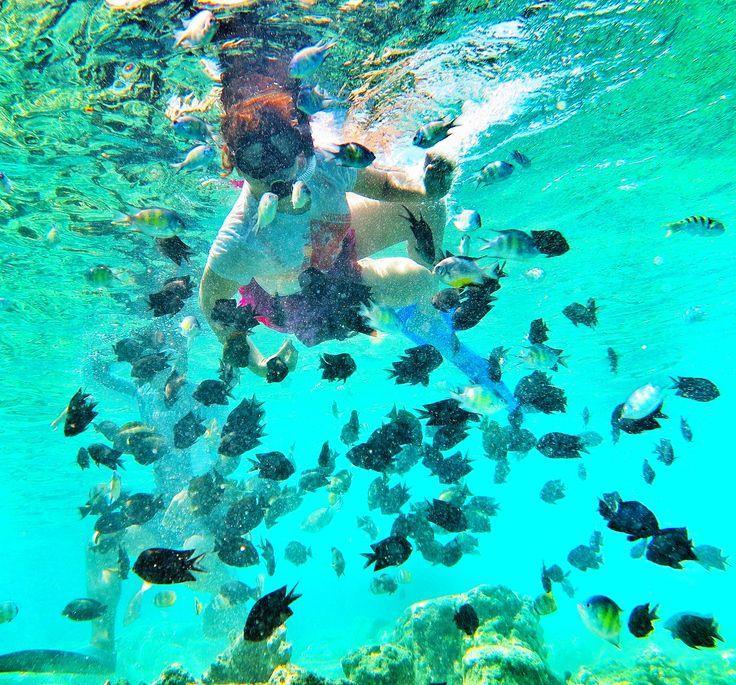 underwater bunaken manado indonesia