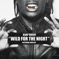 $$$ ALL CHOPPED THO #WHATDIRT $$$ A$AP ROCKY - WILD FOR THE NIGHT (SUDDENBEATZ REMIX) | FREE DL by SuddenBeatz on SoundCloud