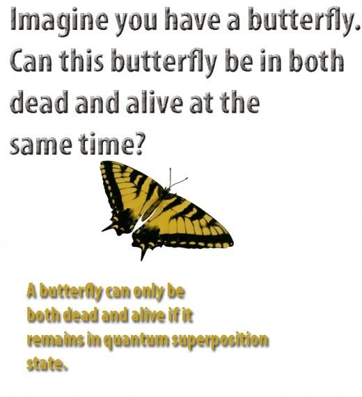 quantum superposition explained