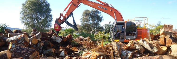 Tree Loppers, Mulching, Lopping & Other Tree Services in Perth
