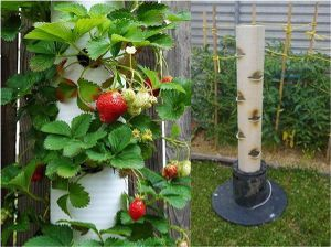 Happiness Crafty: PVC PIPE PROJECTS ~ 11 GARDEN IDEAS