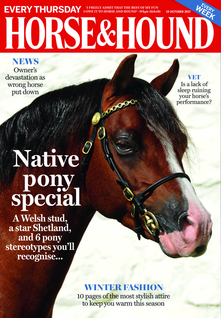 Check out what is inside this week's issue of Horse & Hound (19 October)...