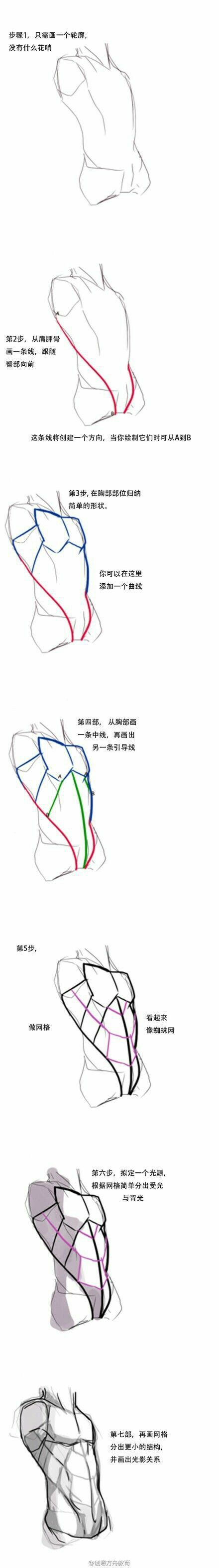 This doesn't really map out so much as capture the rythem of anatomy. The line moving from the back to the front capture the top of the lattisimus dorsi, the rhythm in the obliques , and the edge of the pecs. This mapping might be good for gesture, but you probably should be familiar with the muscles in the torso.