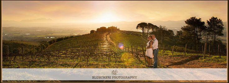 Engagement Shoot in the vines www.bluecheri.co.za