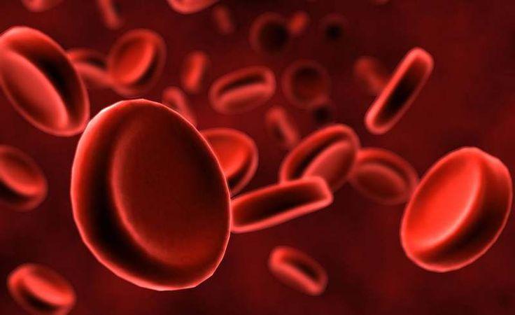Testiranje vještačke krvi na volonterima počinje 2017. godine
