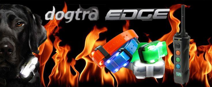 Dogtra EDGE www.pologar.pl