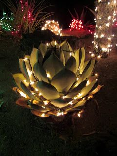 Ethel M. Chocolates Holiday Cactus Garden