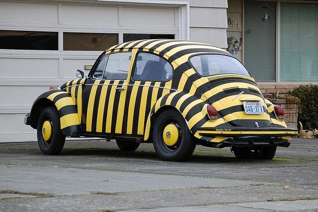17 Best Images About Beetle The Vw Love On Pinterest