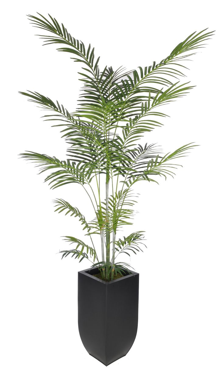 Artificial areca palm tree in planter flower art for Pictures of areca palm plants