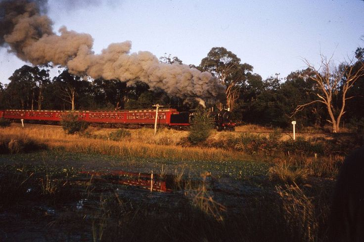 D3 639, nicely hidden behind a shrub, but equally nicely reflected in lovely light, is at a photostop after passing Yarra Junction on the returning ARE 'Farewell Warburton' tour. 26Jun65 John Dennis photo