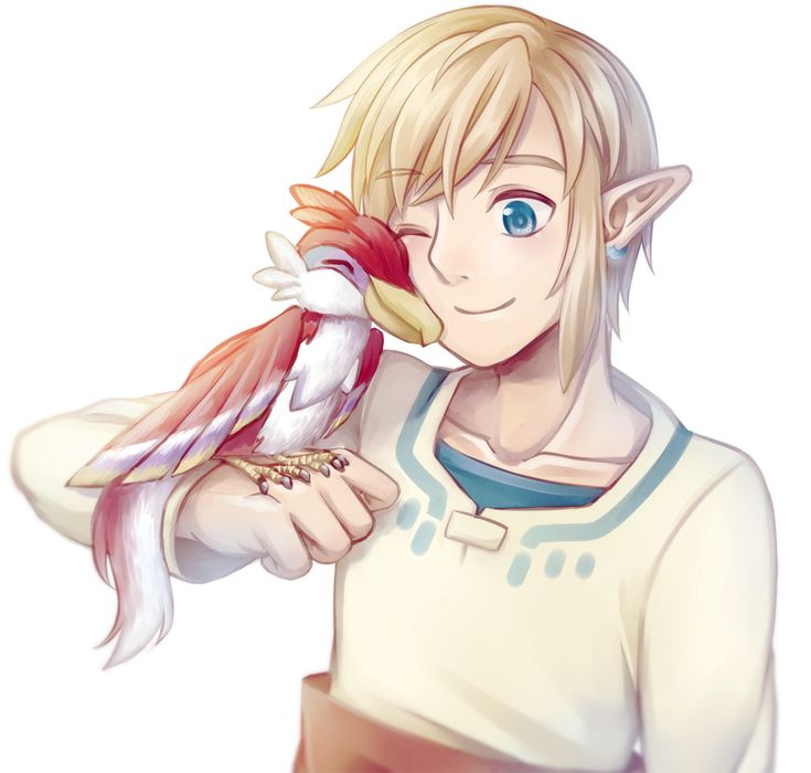 Link & baby loftwing :) #SkywardSword