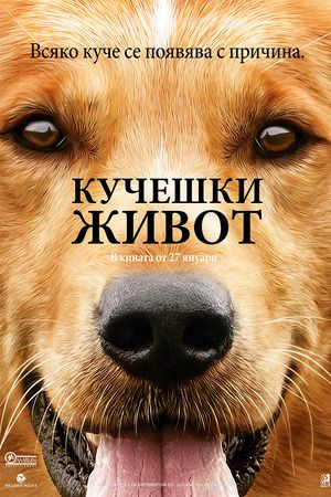 Watch A Dog's Purpose Full Movie Free | Download  Free Movie | Stream A Dog's Purpose Full Movie Free | A Dog's Purpose Full Online Movie HD | Watch Free Full Movies Online HD  | A Dog's Purpose Full HD Movie Free Online  | #ADog'sPurpose #FullMovie #movie #film A Dog's Purpose  Full Movie Free - A Dog's Purpose Full Movie
