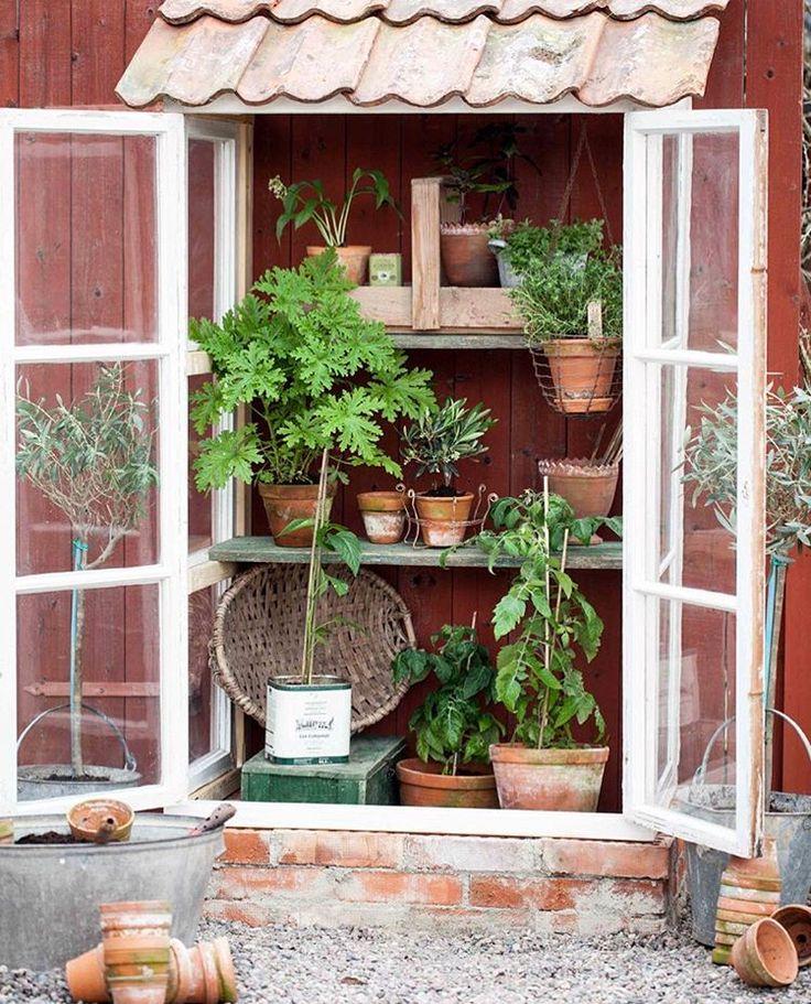 """205 gilla-markeringar, 7 kommentarer - @fabfrida på Instagram: """"Det blev ett litet #växthus till slut. Sen började det regna såklart. Nu redigera bilder och…"""""""