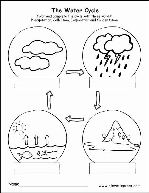 Kindergarten Science Worksheet Printable In 2020 Water Cycle Water Cycle Worksheet Water Cycle Activities