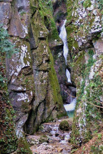 Burrone di Valle S.Felice - Trentino
