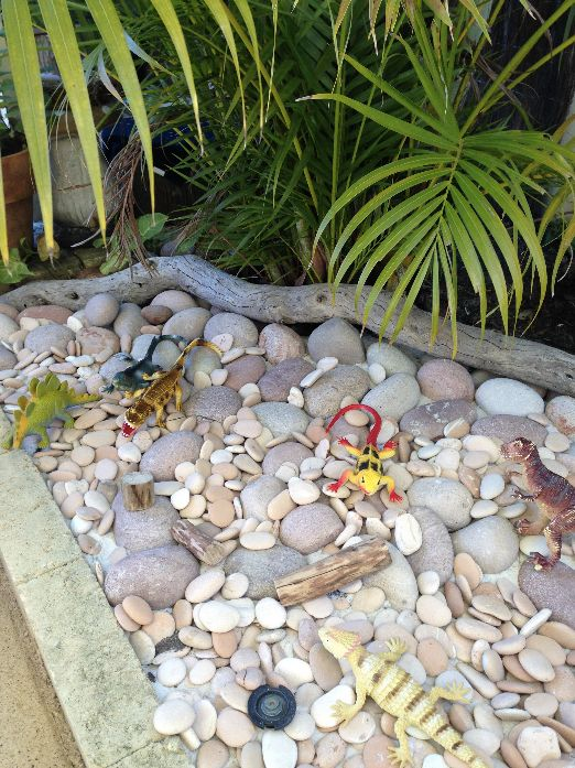 """Rock garden for our dinosaurs and lizards""- This Little Family Daycare ≈≈"