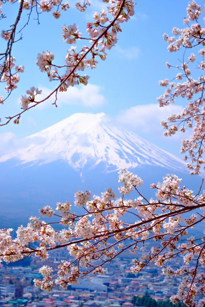 These Are The Most Beautiful Cities In Japan Wallpaper Japan Japan Spring Beautiful Nature Beautiful japanese wallpaper for iphone